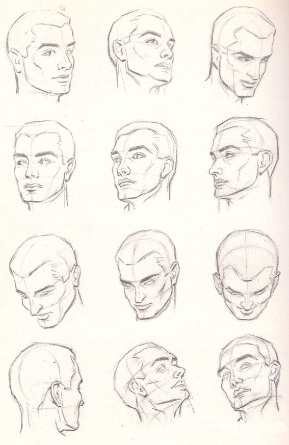 Head Anatomy Poses Pencil Drawing Drawing Instructions