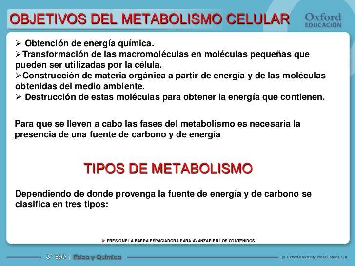Aquí hay 6 maneras de que es metabolismo