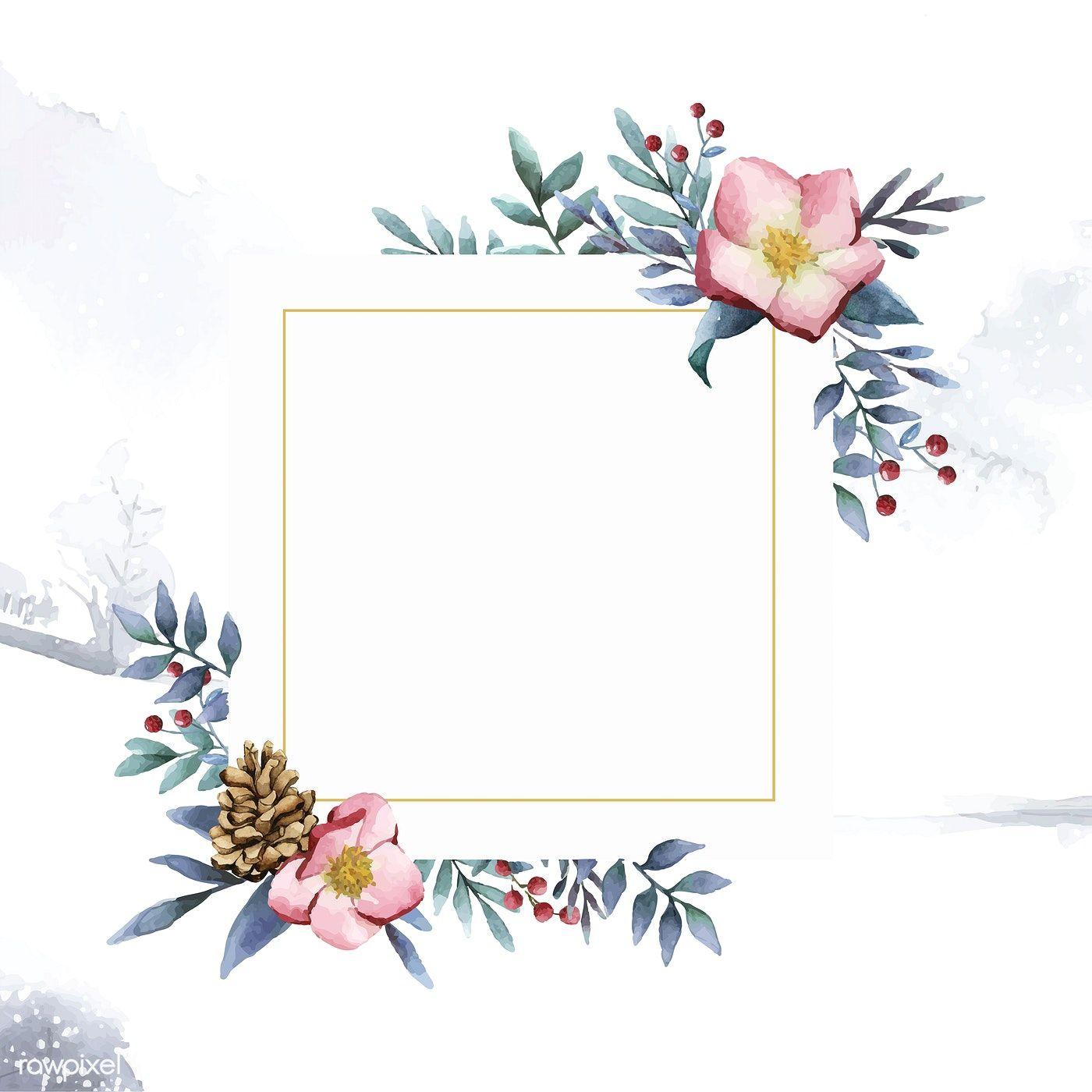 Hellebore flower frame painted by watercolor vector   free