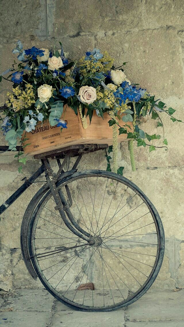 Flower Basket Bicycle Wallpaper Bicycle Wallpaper Iphone