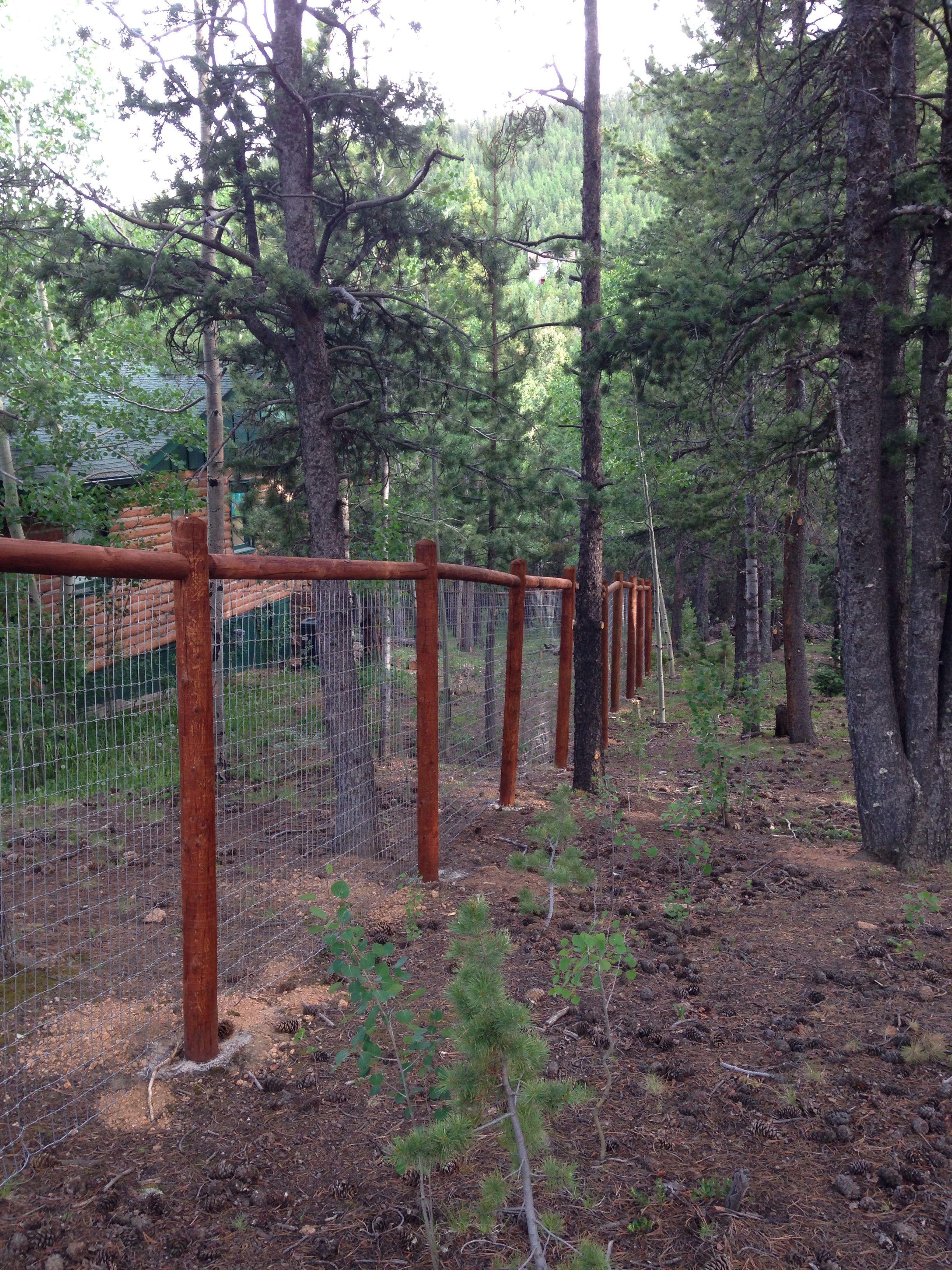 7 aligned simple ideas mini fence diy steel fence house
