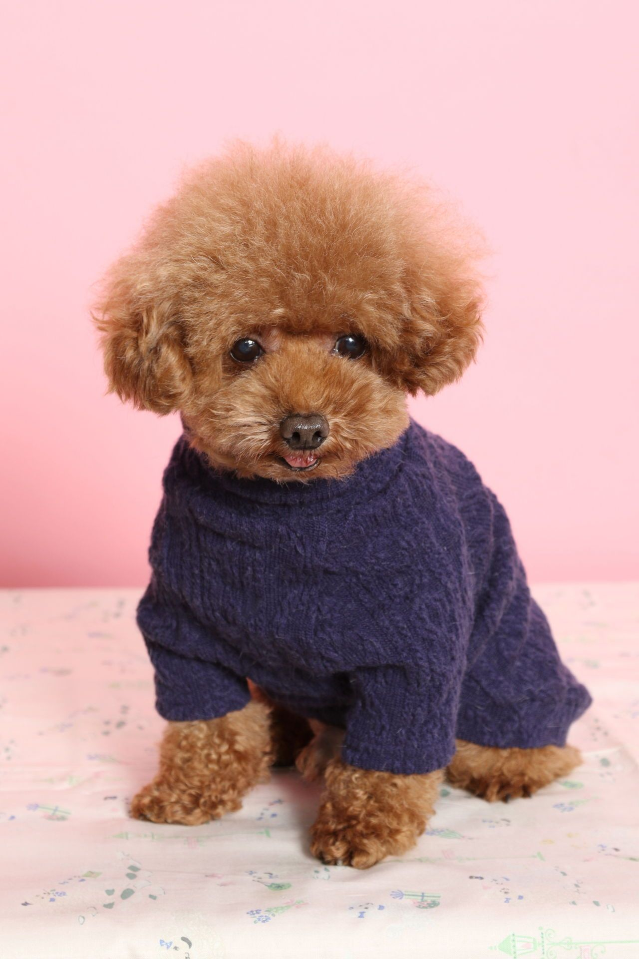 Dog Toy Poodle Check Out Http Www Upscaledogtoys Com Excellent
