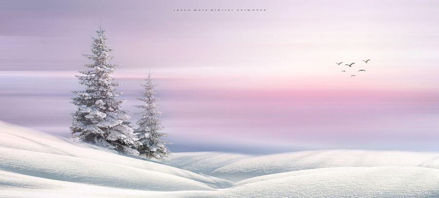 drxgonfly:  Winter Fairytale (by   Jasna Matz)
