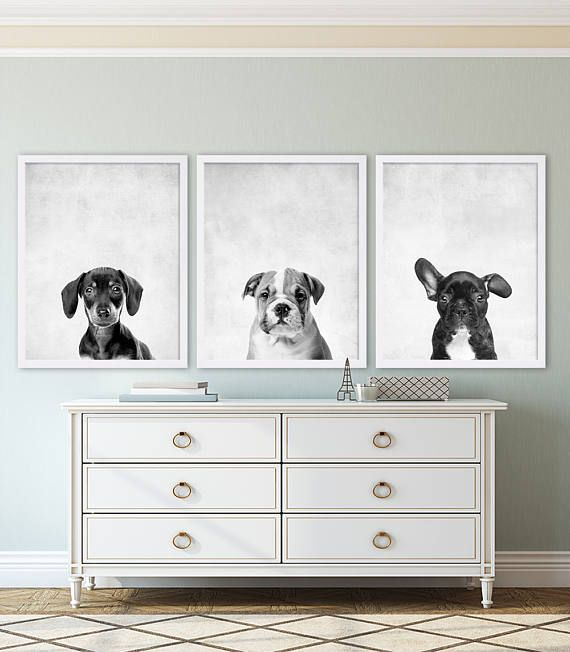 Set of 3 Animal Prints (actual physical prints sent to you) - Dachshund, Bulldog, and French Bulldog  Pick any three from my shop! Just note which ones in the Notes to Seller when purchasing.  Take a look at over a hundred more nursery prints in our nursery decor shop. Nursery art makes for great personal gifts at baby showers or to welcome a loved one into the world! www.etsy.com/shop/CocoAndJames ........................................................................................