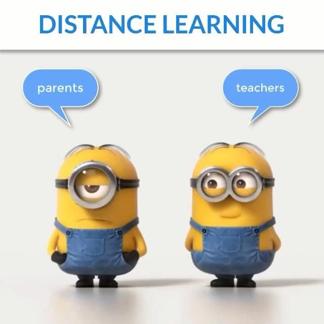 Distance Learning Meme Video Funny Minion Videos Funny Minion Pictures Funny Minion Memes