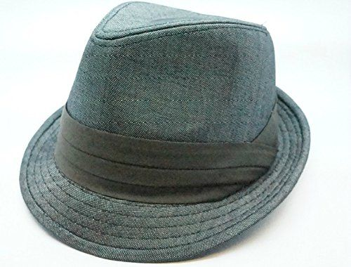 Bruno Capelo Headwear Poly Denim Gray Fedora Hat H-56 (Medium) Bruno Capelo http://www.amazon.com/dp/B011VT73UI/ref=cm_sw_r_pi_dp_qiyTvb100FBTA