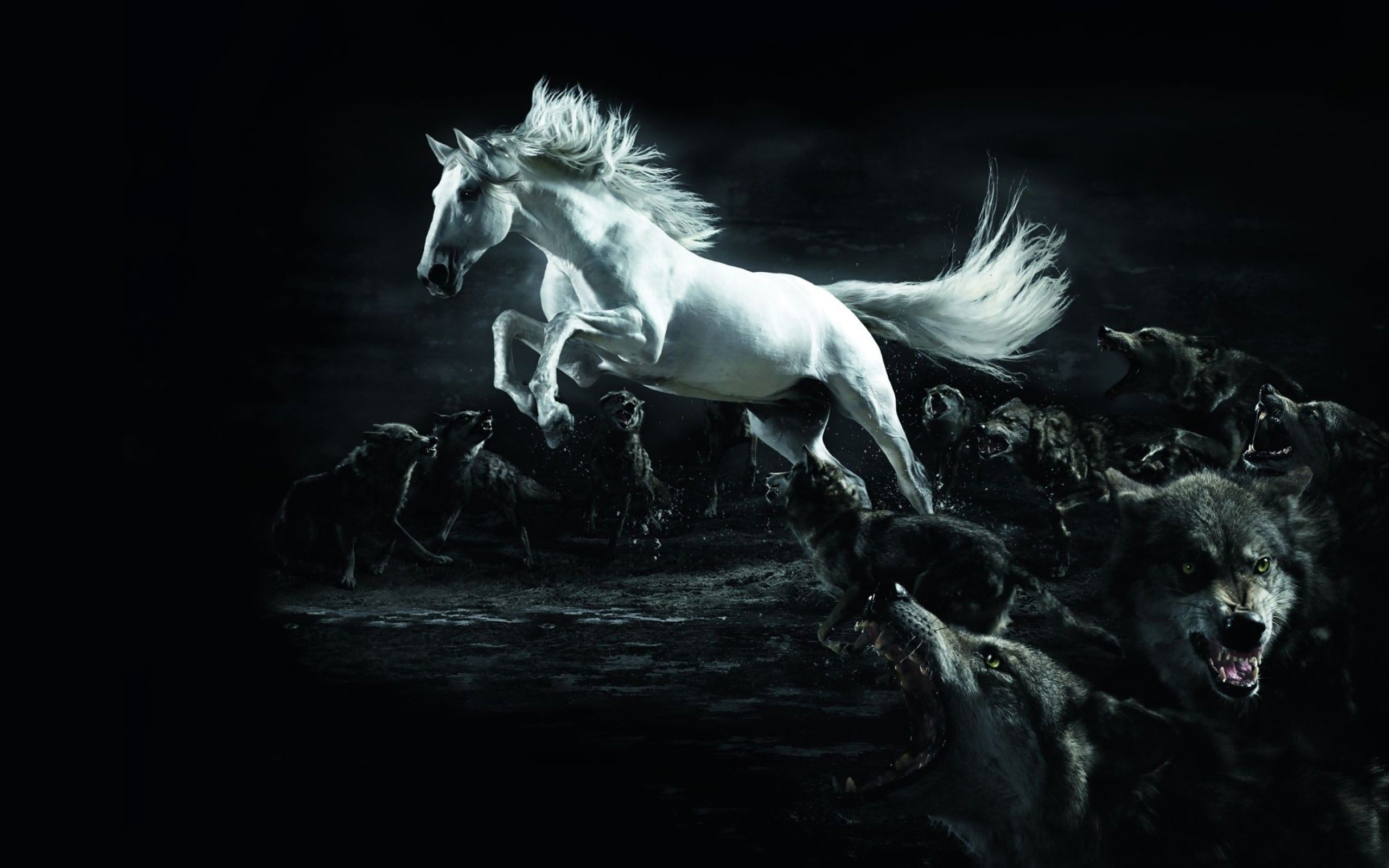 Fantastic Wallpaper Horse Wolf - 0c880bfec541691cb3bf627cd76a70c4  Snapshot_7862100.jpg