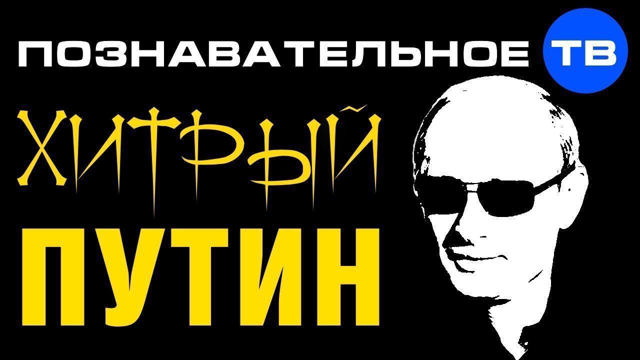 Хитрый  (Познавательное ТВ, Леонид Доброхотов)