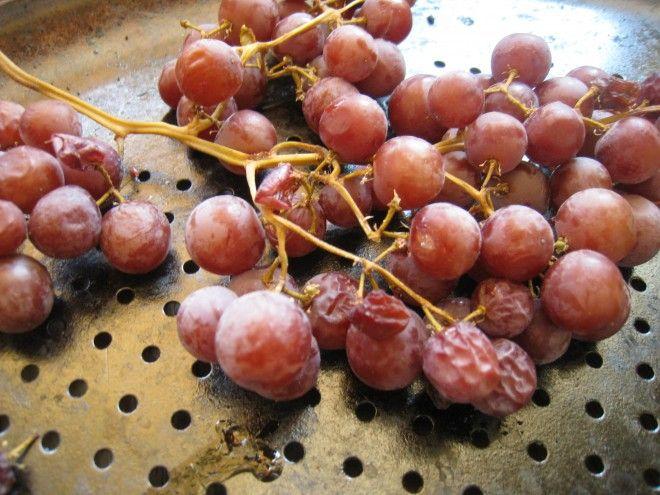 making raisins- need to try this