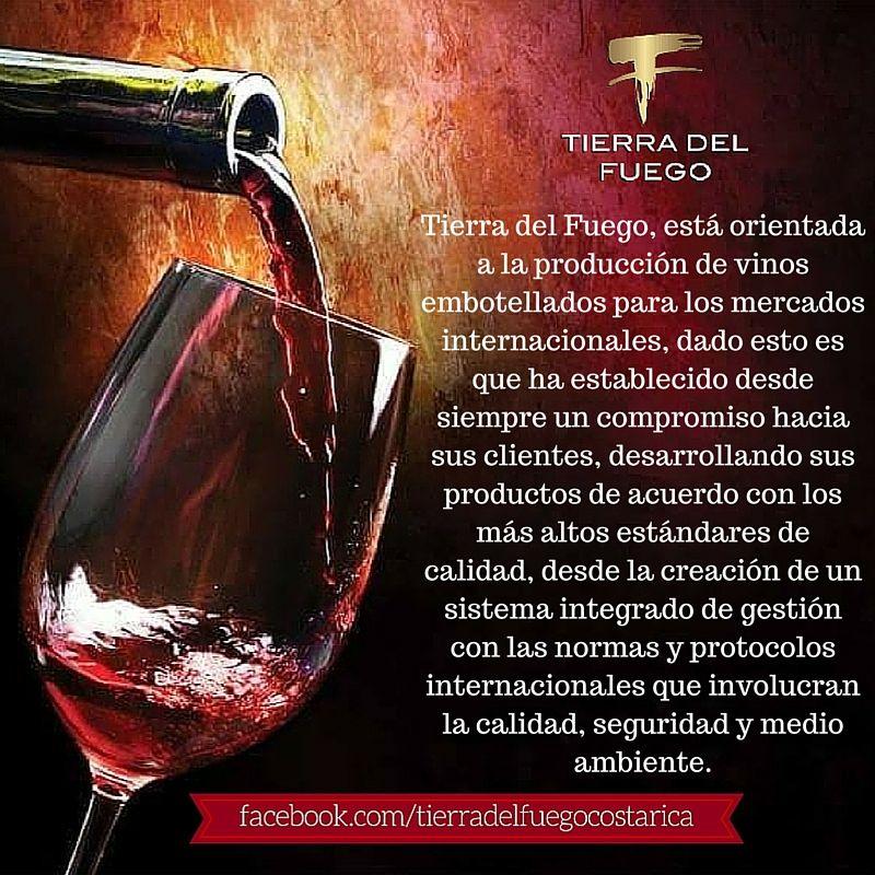 Tierra Del Fuego Vino Empresa Alcoholic Drinks Red Wine Alcohol