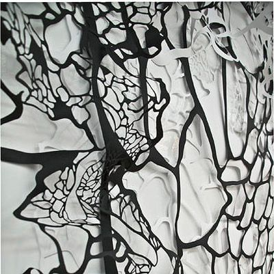 Gianna Paniagua Natural Formations hand cut paper detail