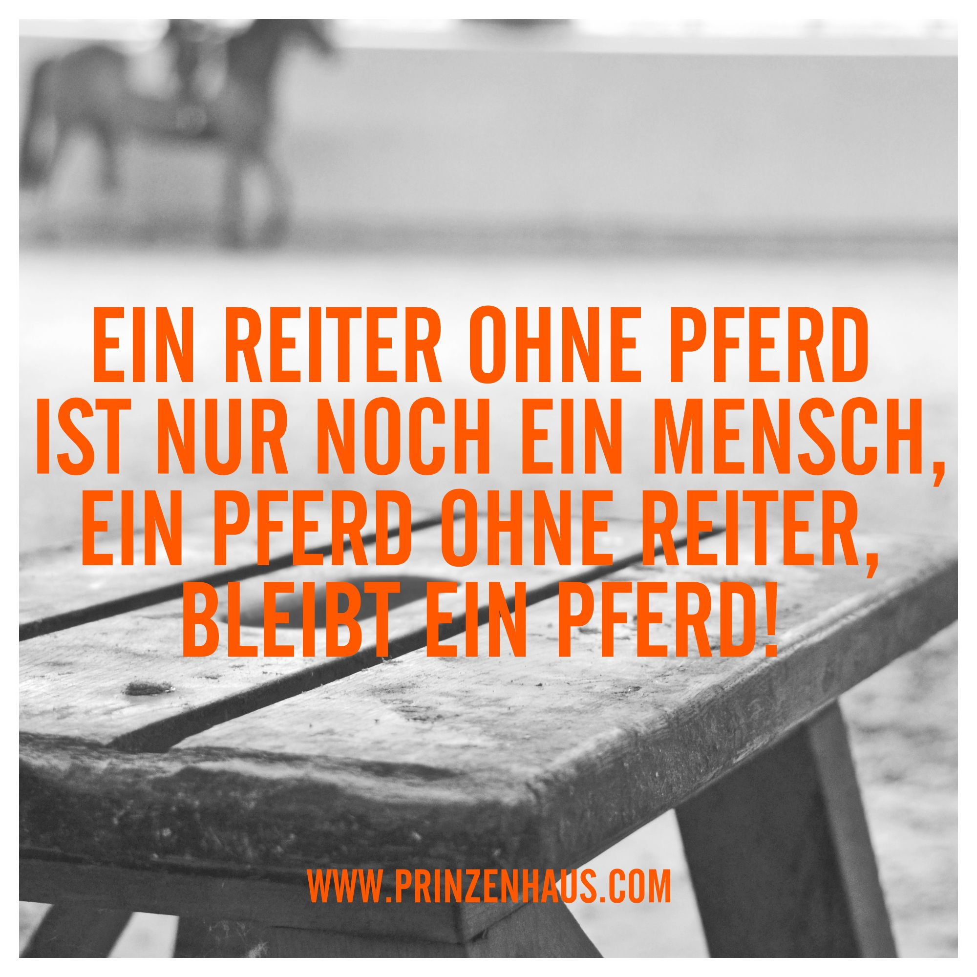 1000+ images about reiter sprüche on pinterest | keep calm
