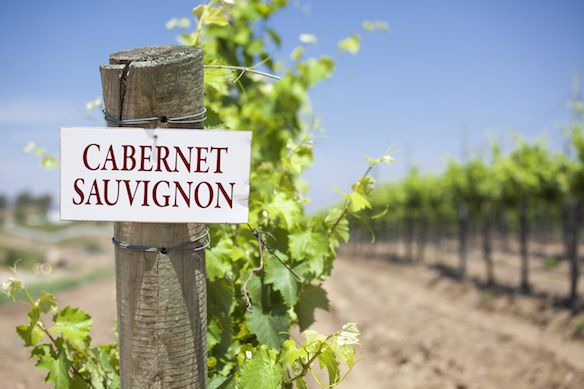 Did you know Cabernet Sauvignon is originally from France and it's parents are Sauvignon Blanc and Cabernet Franc? 5 little-known facts about Cabernet.