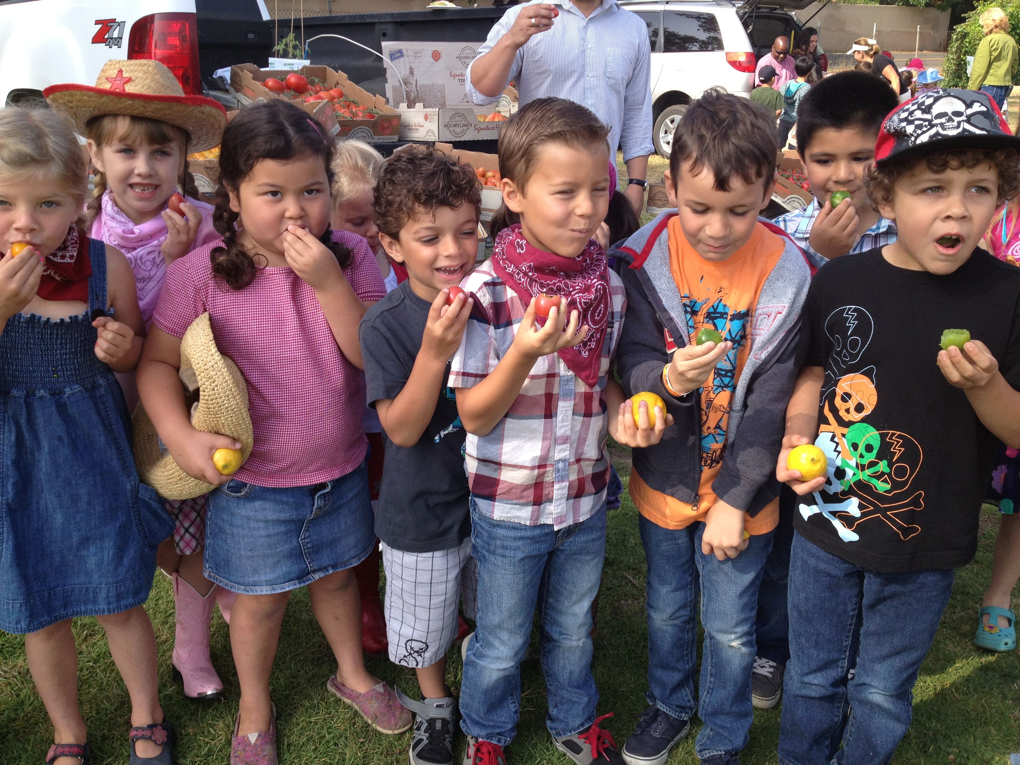 2013 Farm Day at Mound School. We could not believe how much they liked all the different colored tomatoes!