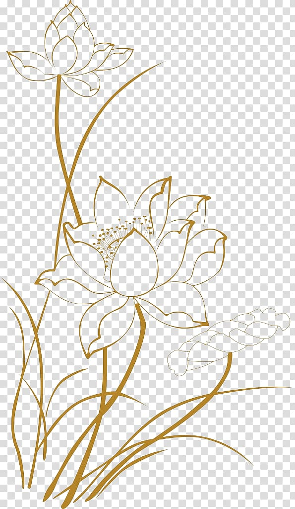 Xinshi, Shandong Euclidean , Lotus line drawings, lotus flower illustration transparent background PNG clipart