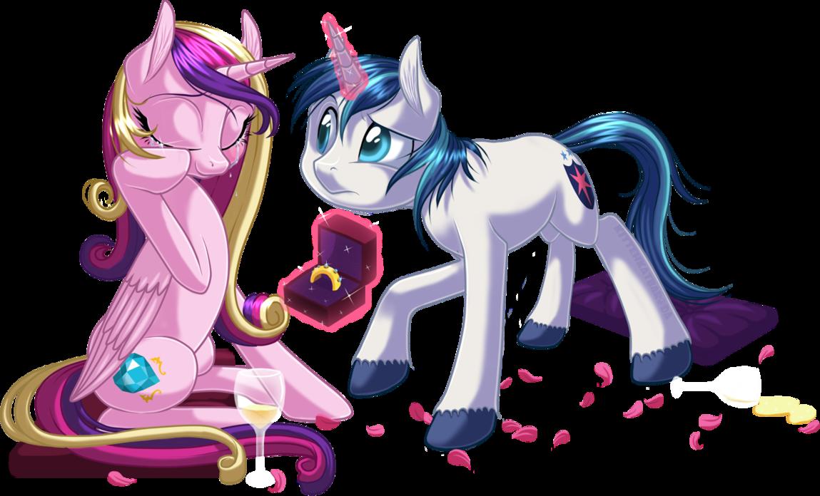 Princess Cadence and Shinning Armor proposal. | Princess ...