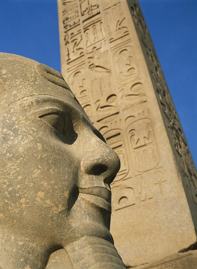 Detail Of Head Of Pharaoh In Front