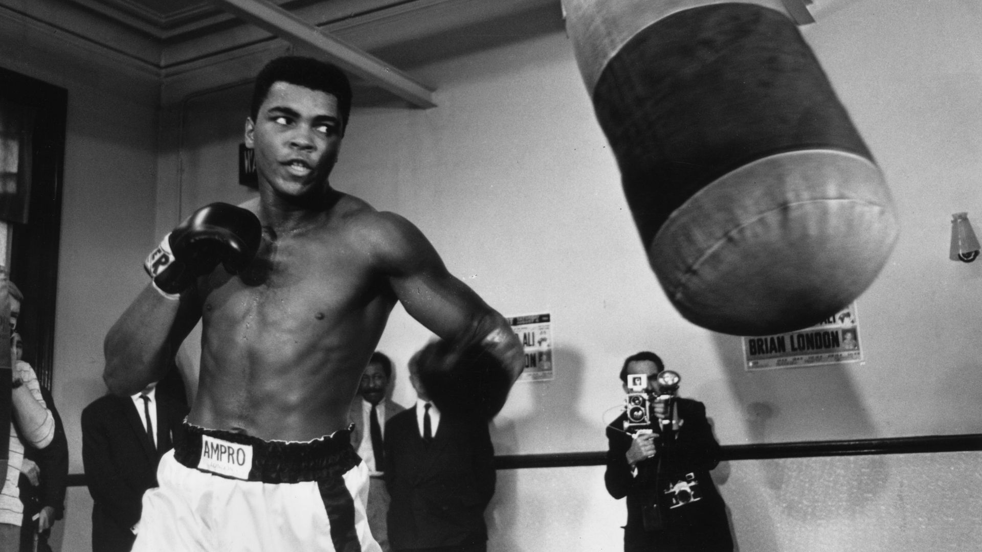 Muhammad ali wallpapers 7 celebrities wallpapers pinterest muhammad ali wallpapers 7 voltagebd Images