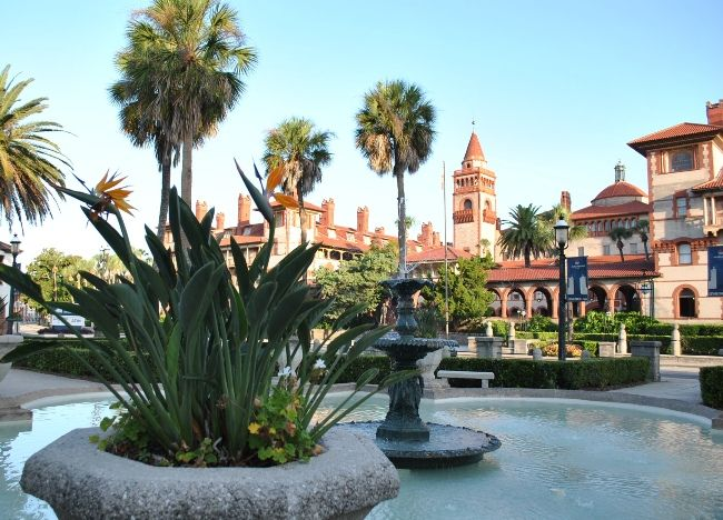 Birds Of Paradise In Front Of Flagler College Places To Travel St Augustine Flagler