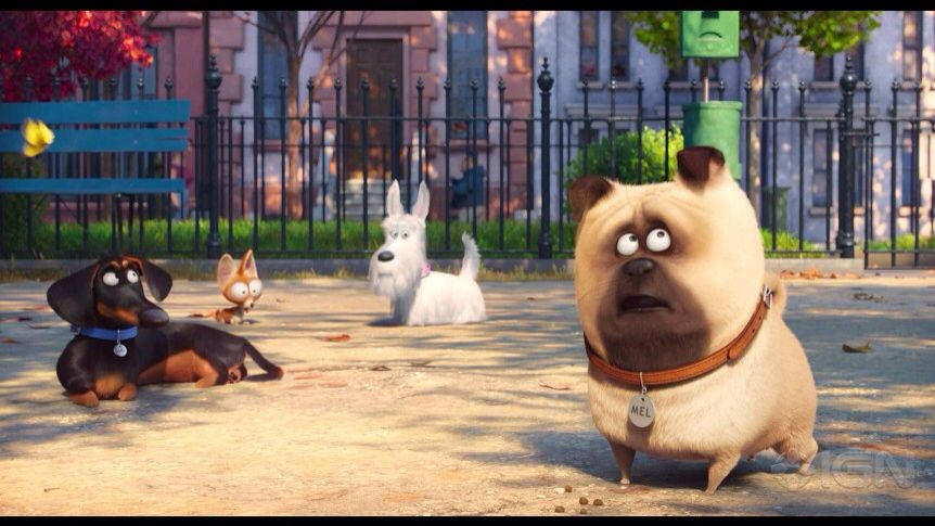 Pin By Shari On My Favorite Childrens Movies Secret Life Of Pets