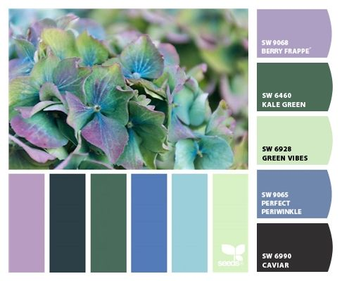 Paint Colors From Colorsnap By Sherwin Williams Color Palette Yellow Purple Color Palettes Sherwin Williams Color Palette