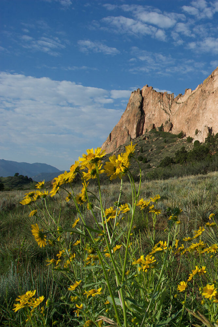 Summer Getaway Think Colorado Springs Travel Around The World Travel Travel Photography