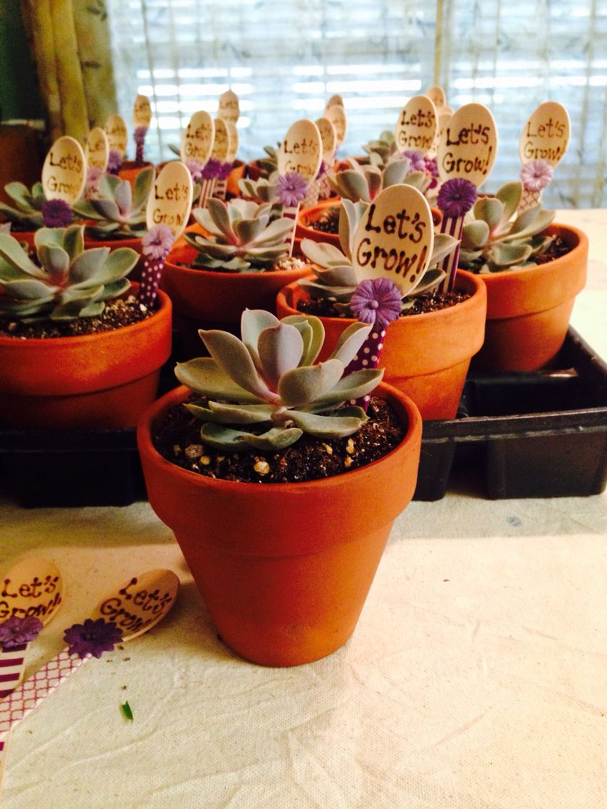 Let's Grow! -New staff welcome gift from the counseling office ...