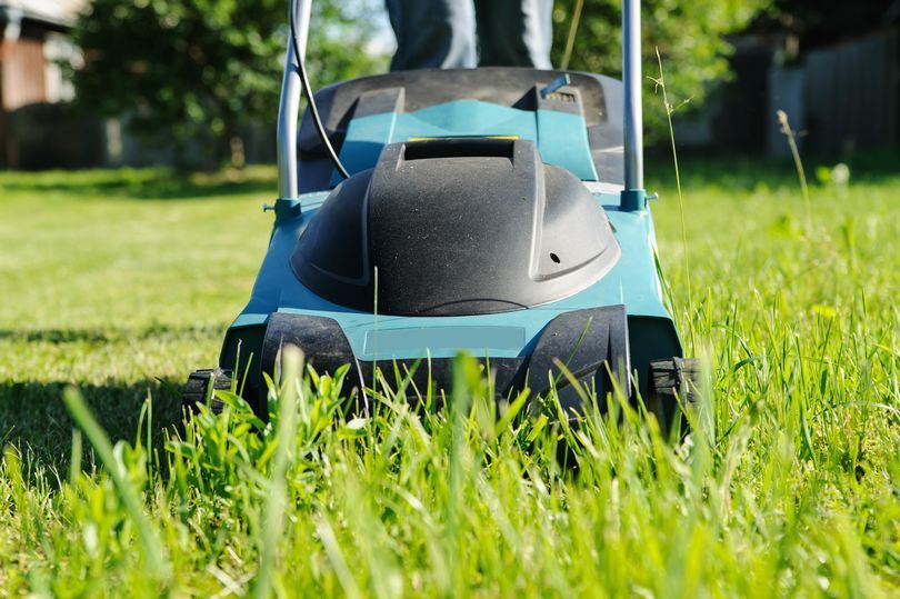 Mowing Wet Grass Here Are The Top 20 Tips To Know Lawn Care