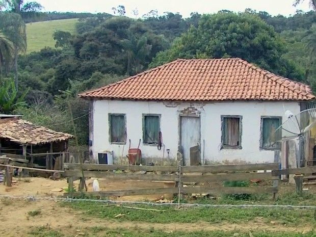 Roca Lirios Do Campo Eu Era Feliz E Nao Sabia Casas De