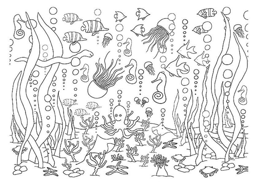 underwater coloring pages 5 Underwater Coloring Pages | coloring pages | Coloring pages  underwater coloring pages
