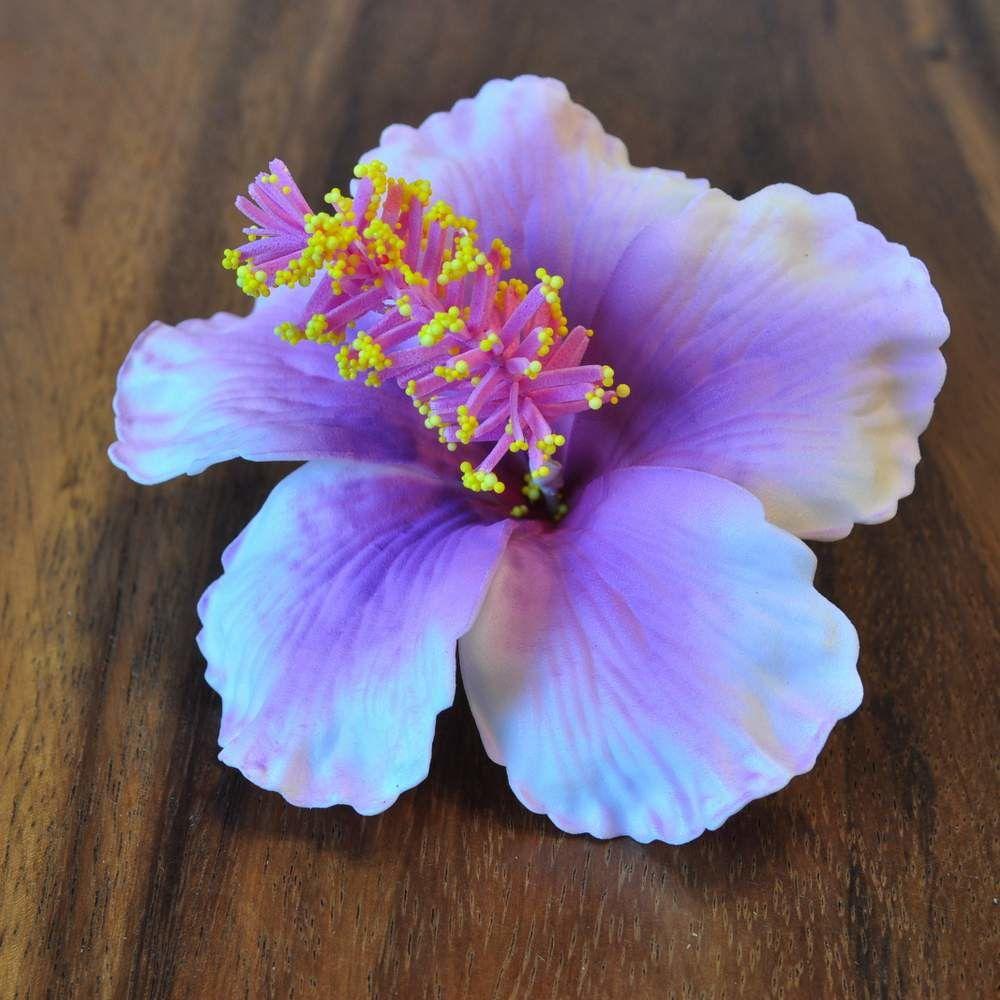 Blten Kunstblumen Hibiskus Violett Hibiscus And Flowers
