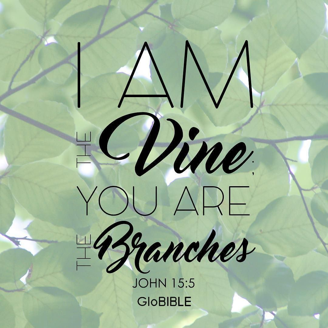 """""""I Am The Vine; You Are The Branches. Whoever Abides In Me"""