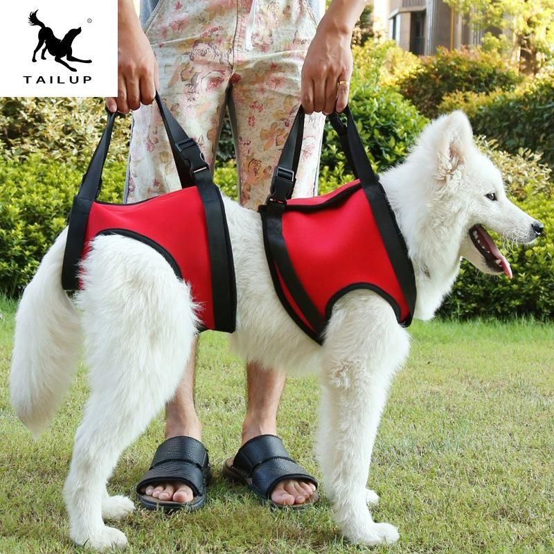 2019 Dog Front And Rear Legs Support Rehabilitation Harnesses