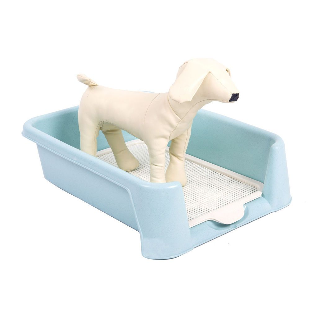 """Favorite Dog Litter Box High Protection Plastic Training Tray, 22""""L x 16""""W x 6""""H #Favorite"""