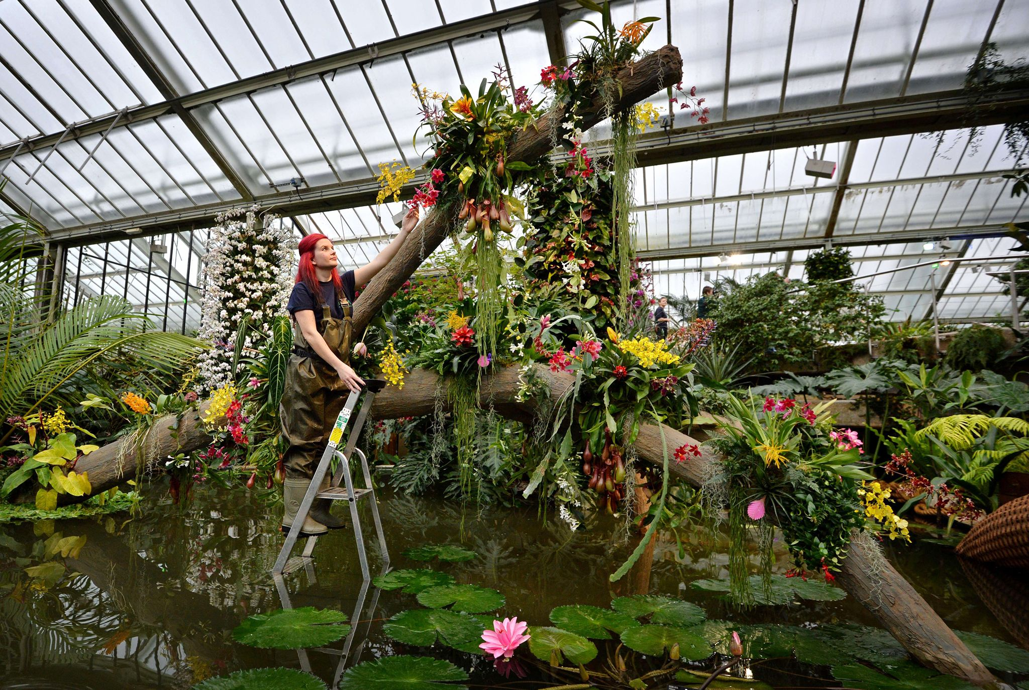 Где на метро тимирязевская находится оранжерея чтобы купить цветы