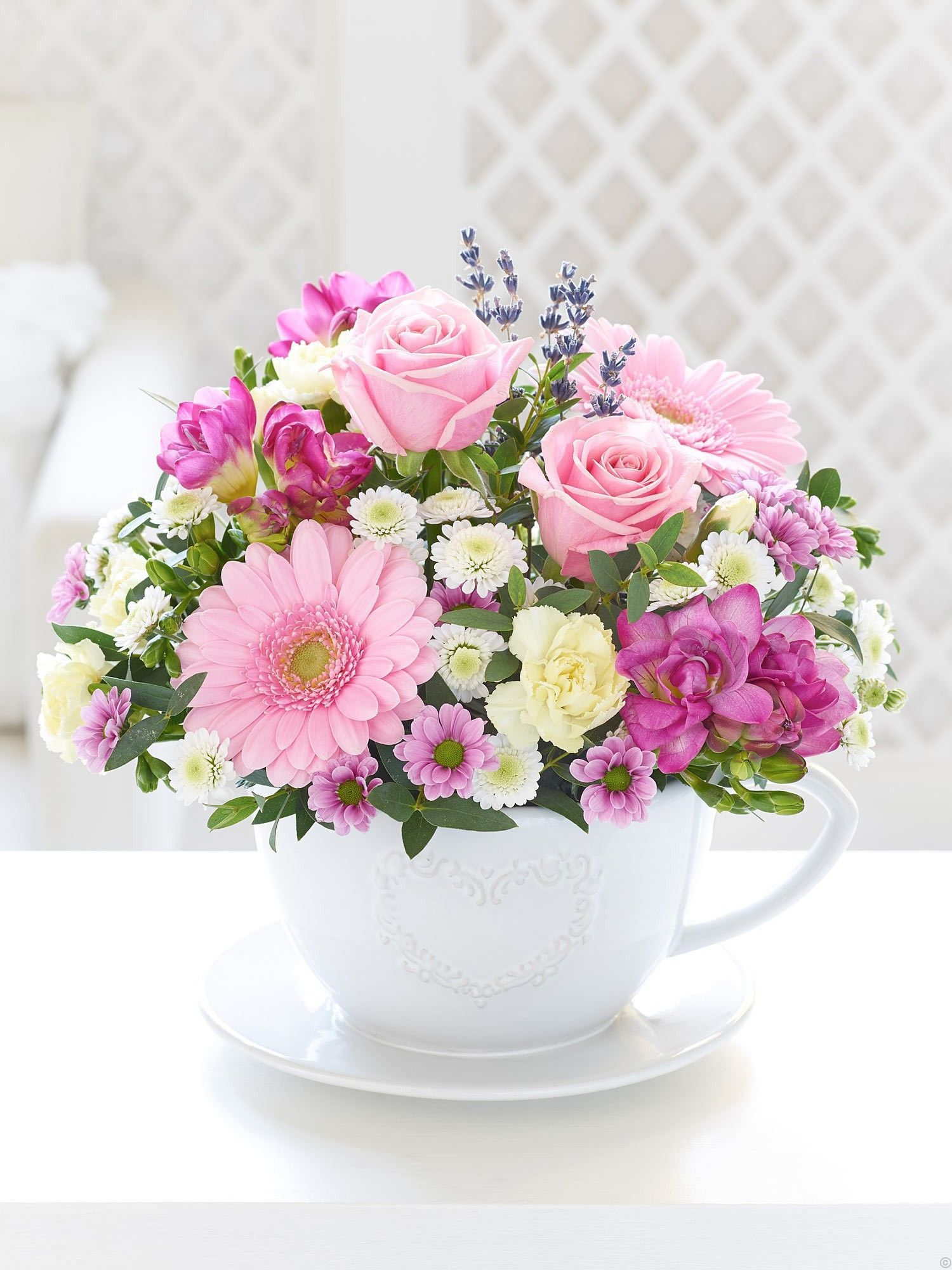 Teacup & Saucer Arrangement Flowers Flower