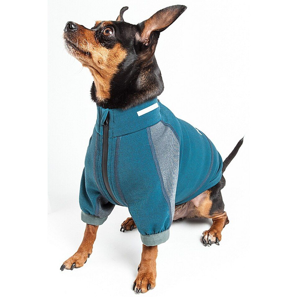 Pet Life Small Helios Eboneflow 4-Way Stretch Performance Yoga Dog T-Shirt In Blue