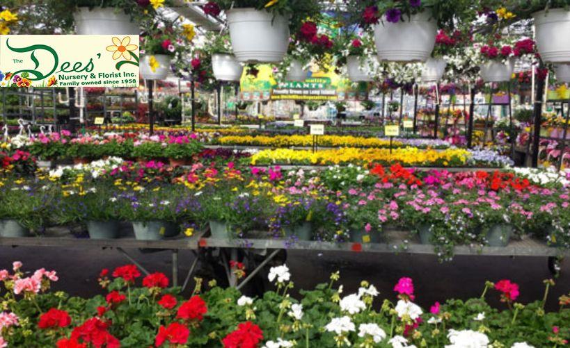 ... 678 3535 Http://www.deesnursery.com Founded In 1958, Deesu0027 Nursery U0026  Florist Is Long Island New Yorku0027s Largest Florist, Nursery, And Garden  Center.