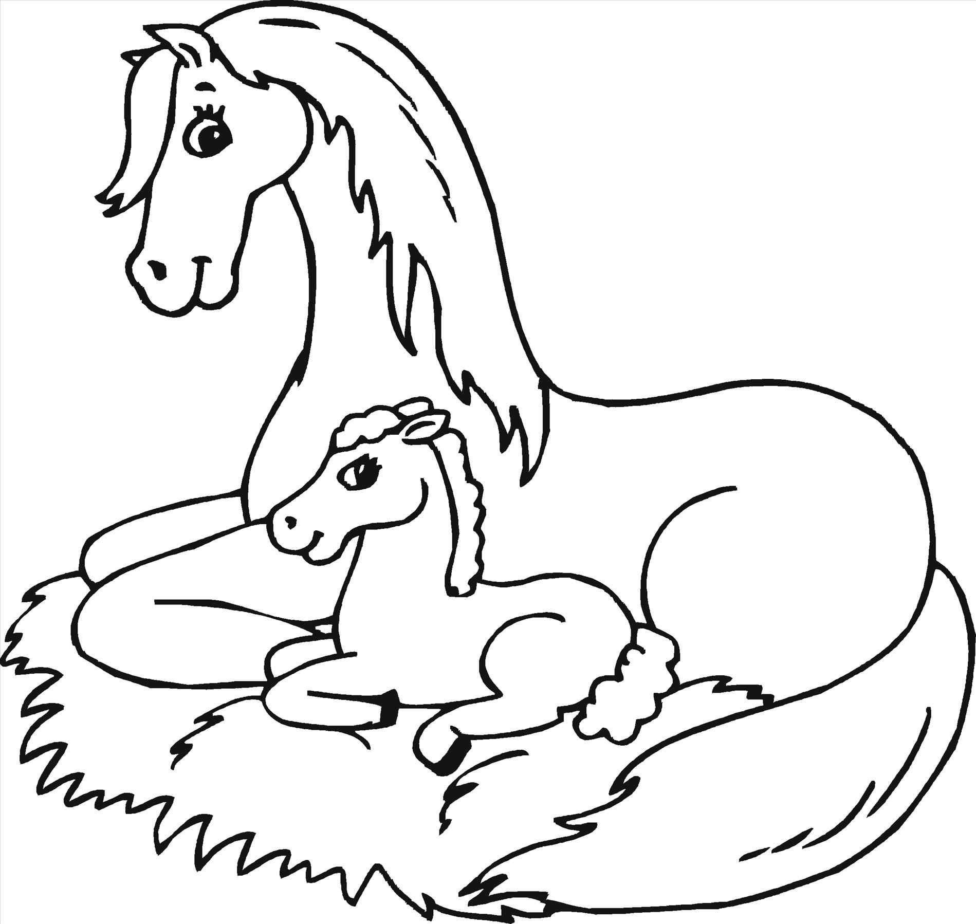 Coloring Pages Of Baby Horses From The Thousand Photographs On The Net Regarding Coloring Pages Of Baby Horses Choices The Top Series Along With Greatest Qu