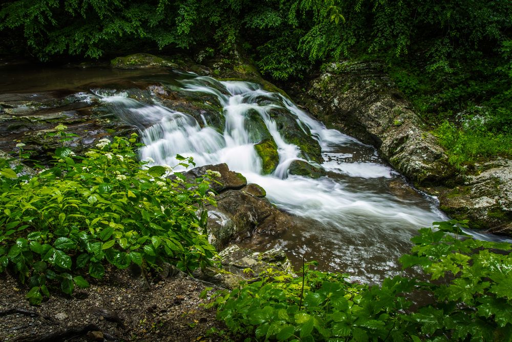 Nothing like a peaceful stream in the Smokies Smoky