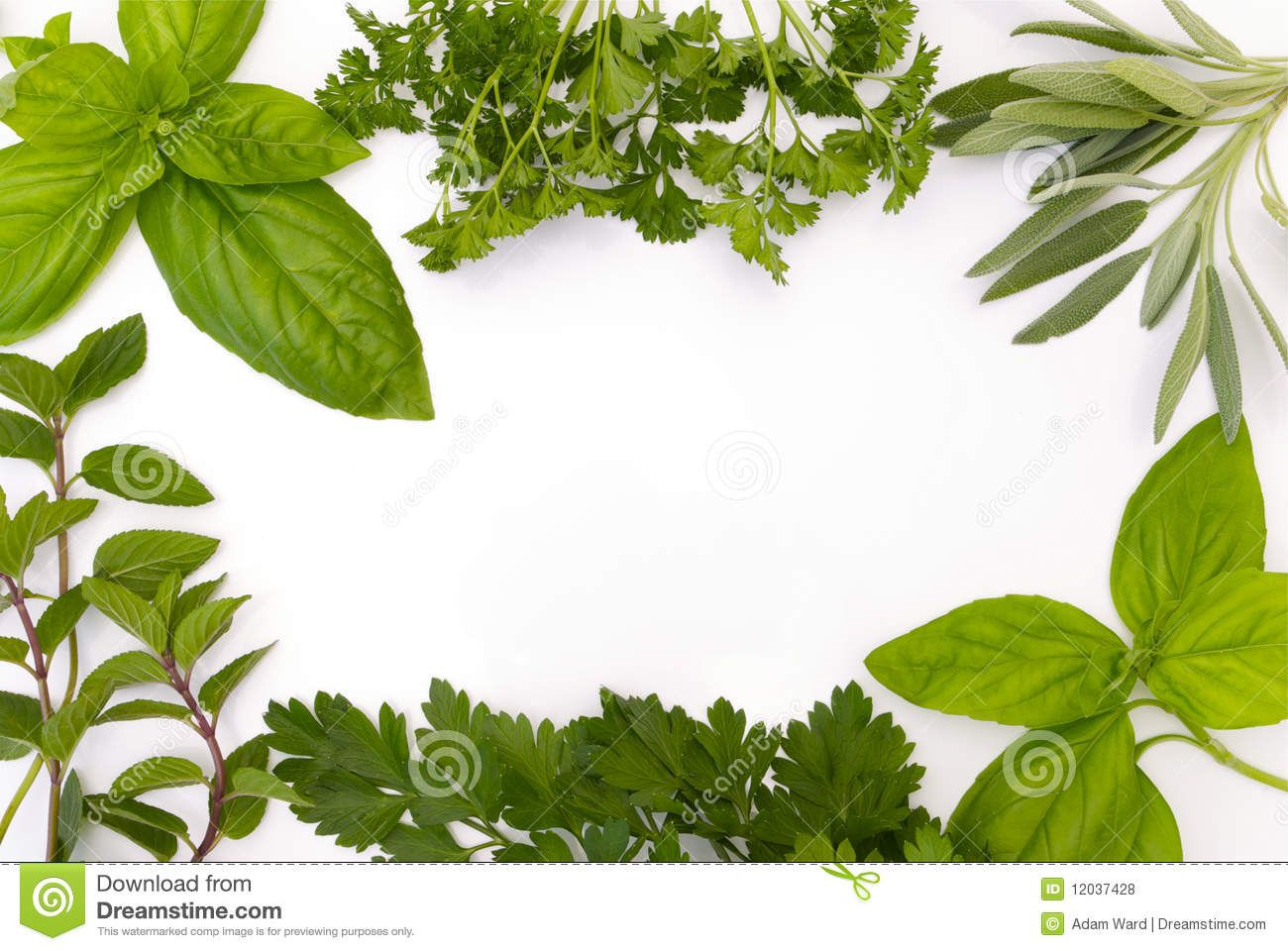 Various Herbs In A B