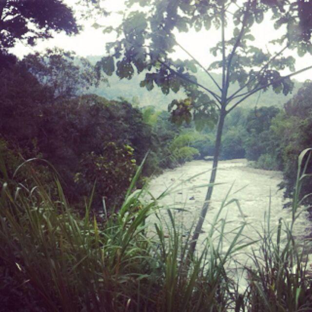 #Ecuador 🇪🇨#MoronaSantiago #Asuncion #Sucua #Selva