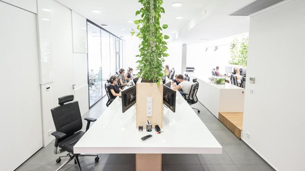 Modern Office Interior With Indoor Plants Home Decor Office