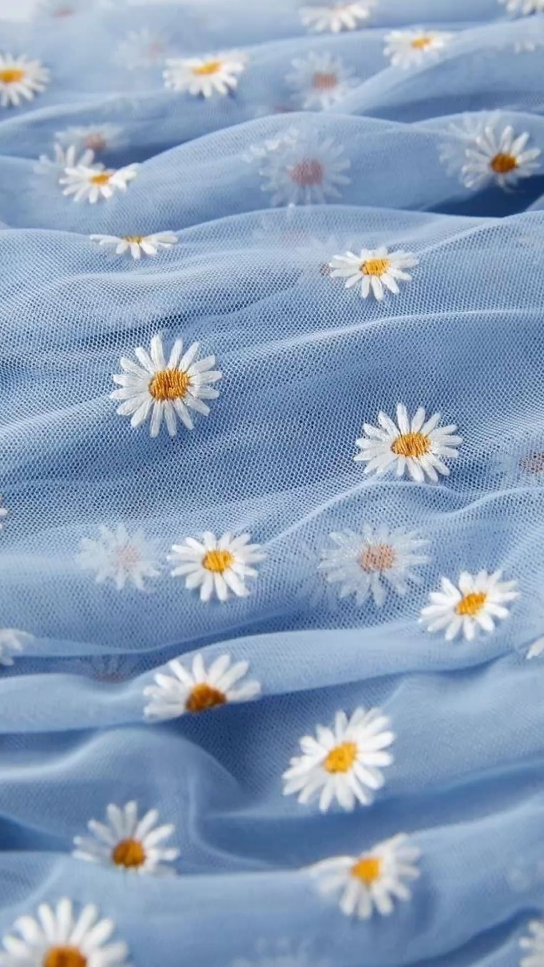 Red And Blue Tulle Daisy Wallpaper An Immersive Guide By Phone Wallpapers 4k