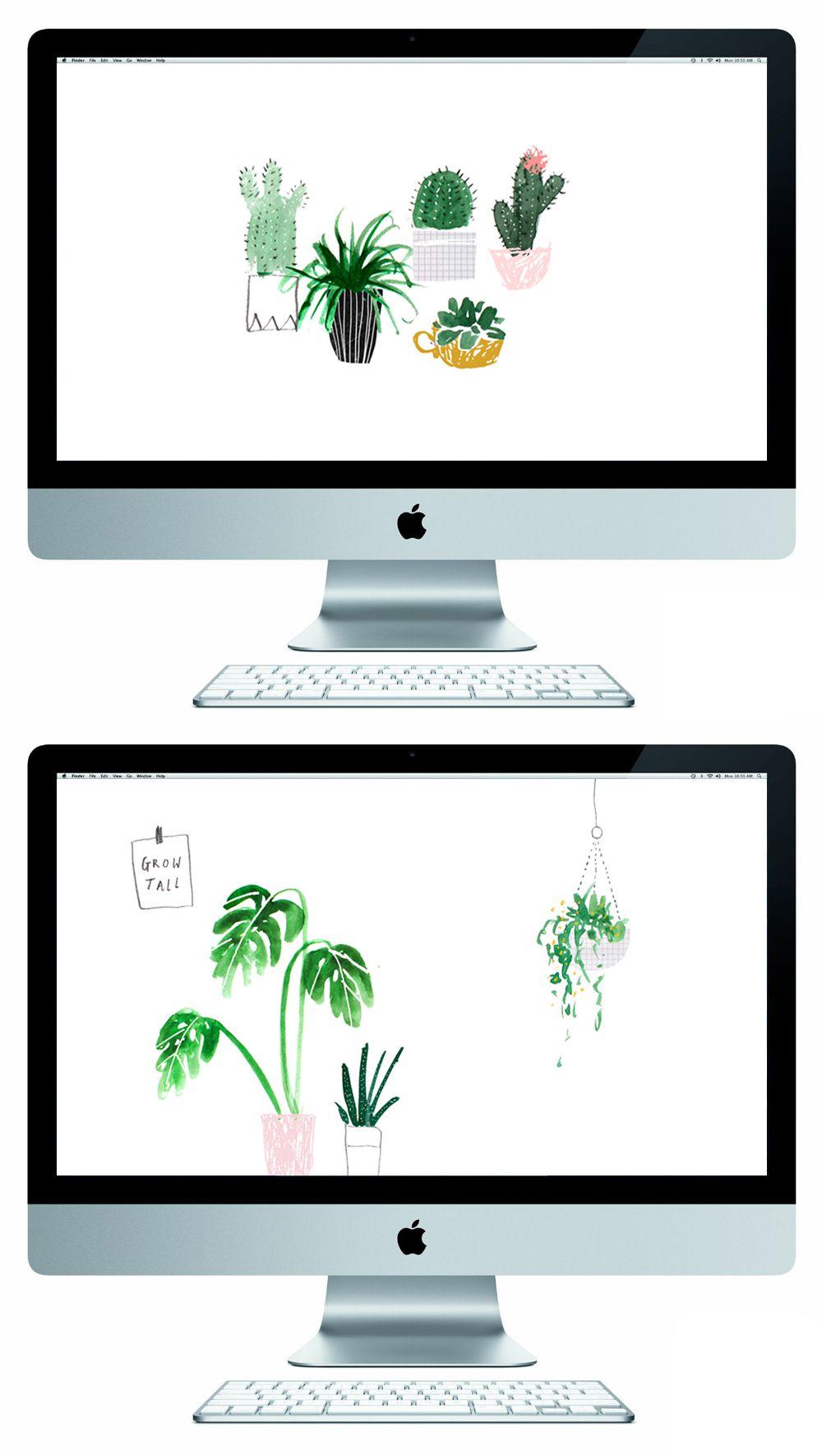 Something For Your Screen The Lovely Drawer Imac Wallpaper Free Desktop Wallpaper Plant Wallpaper