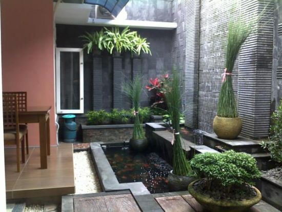 Taman Dan Kolam Belakang Rumah Minimalis Kumpulan Model Rumah Terbaru