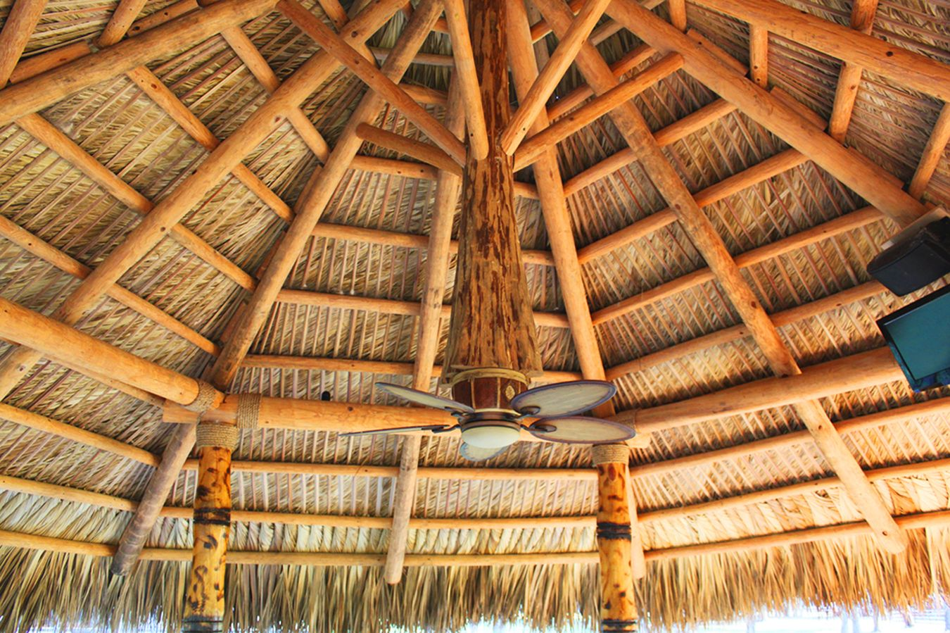 tiki hut and bar in ocala fl on horse farm tiki huts in florida
