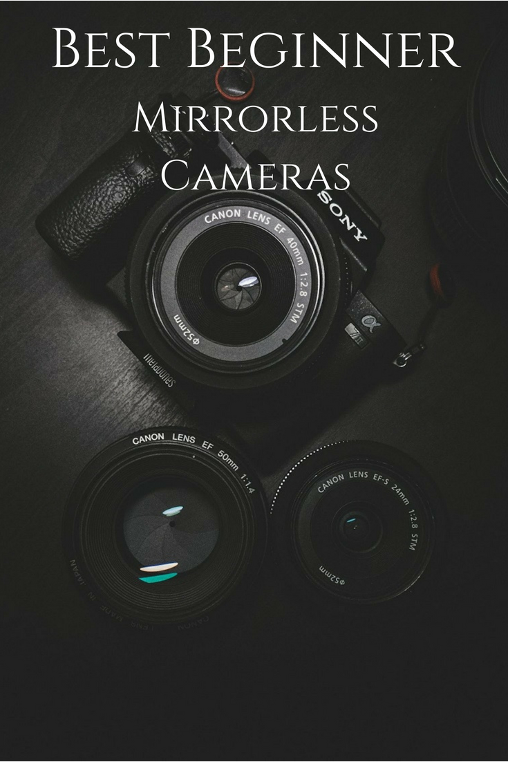 5 Best Mirrorless Cameras For Beginners With Images Mirrorless Camera Photography Mirrorless Camera Learning Photography