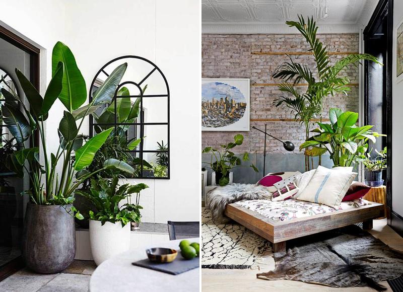Apartment Number 4 Uk Interior Design Blog Living Room Plants City Living Apartment Small Apartment Design