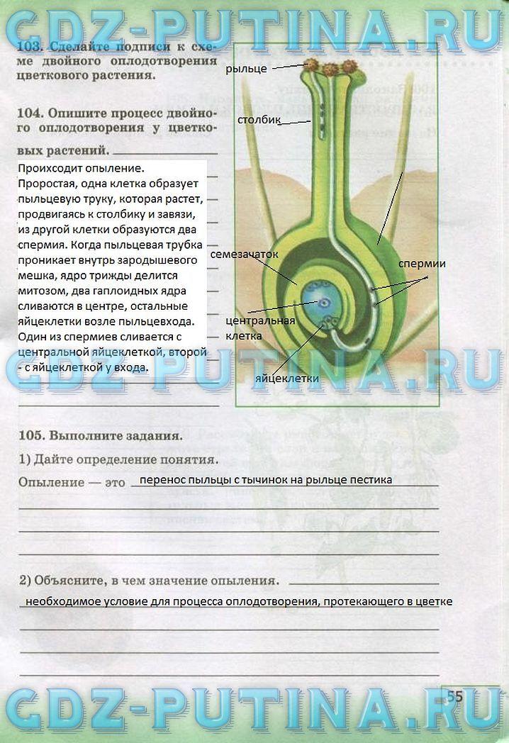 Тесты по биологии 6 класс к учебнику пономарева